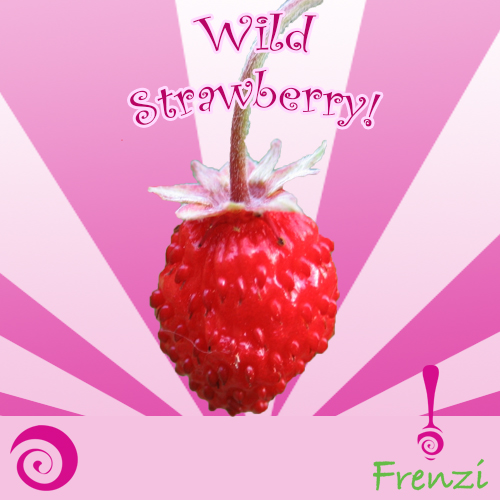 Frenzi_Frozen_Yogurt_Flavors_Wild_Strawberry