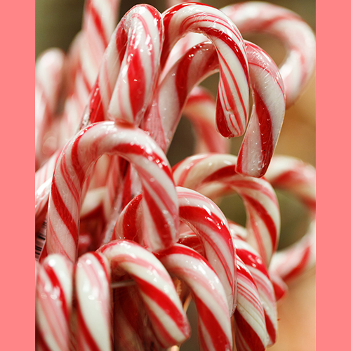 frenzi-frozen-yogurt_peppermint_stick_frozen_yogurt