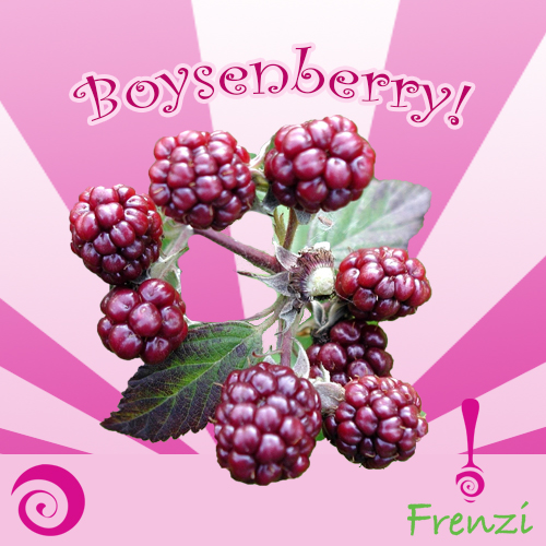 Frenzi_Frozen_Yogurt_Flavors_Boysenberry
