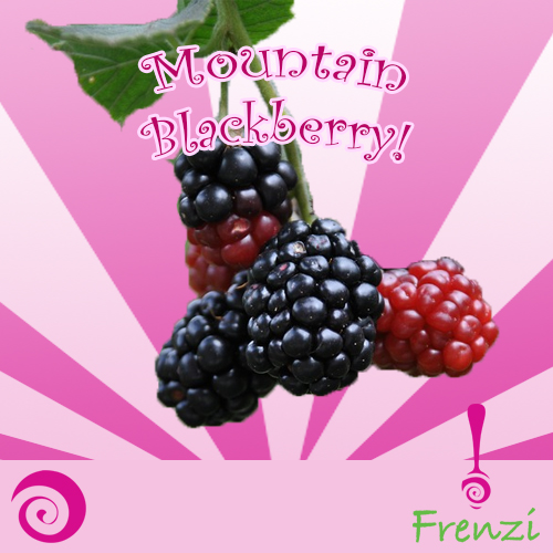 Frenzi_Frozen_Yogurt_Flavors_Mountain_Blackberry