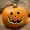 Celebrate Fall With Pumpkin Flavored Frozen Yogurt
