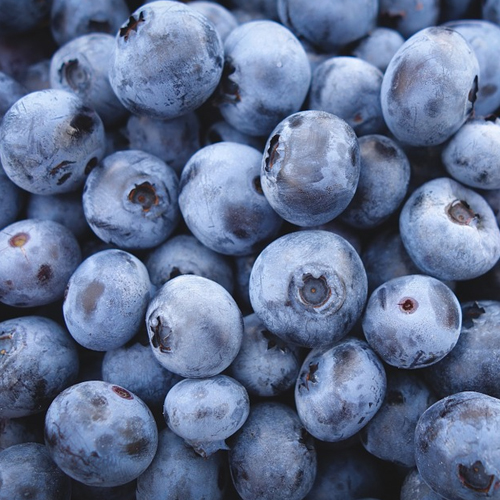 Frenzi Frozen Yogurt_Flavor of the Week NSA Blueberry No Sugar Added